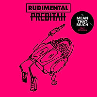 Rudimental ft. Morgan - Mean That Much.j