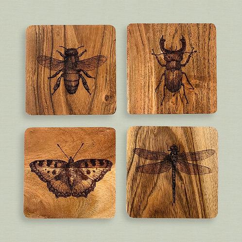Bug Coasters