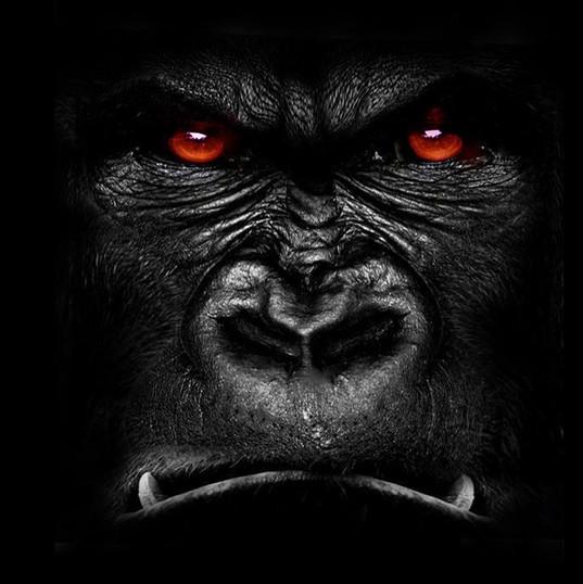 Gorilla Grodd - David Sobolov
