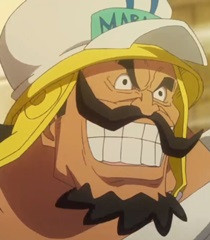 Sergeant Straight - One Piece Film Gold