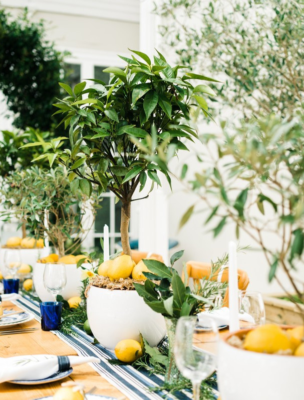 Mini table top trees