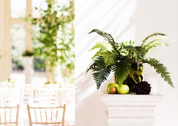Frondy ferns on a pedestal