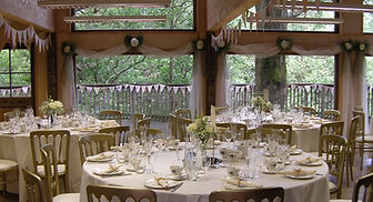 Tree House weddings with living trees and greenery in hampshire uk