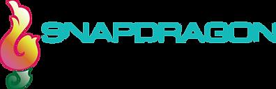 Snapdragon Entertainment, Charlotte NC DJ Services