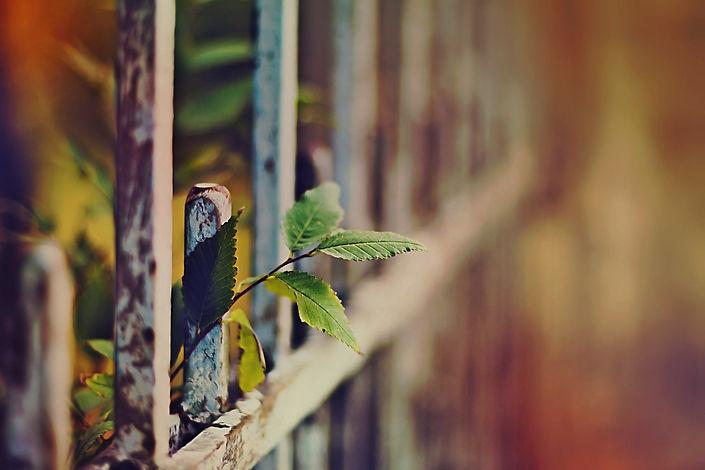 забор из профнастила в нижнем новгороде