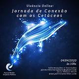 91774257_2952393704839780_41737472256644