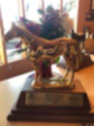 aged mares champion 19.jpg