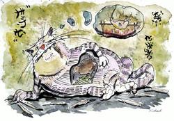 Cat aet kiwi
