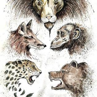 Animal Meeting
