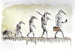KiwiEvolution