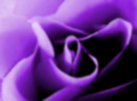 Screenshot_20181015-122417~2.png