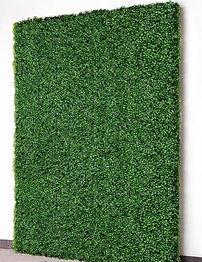 greenerywall.JPG