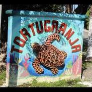Tortuganja