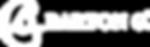 BG_Corp_Logo_Horizontal_White.png