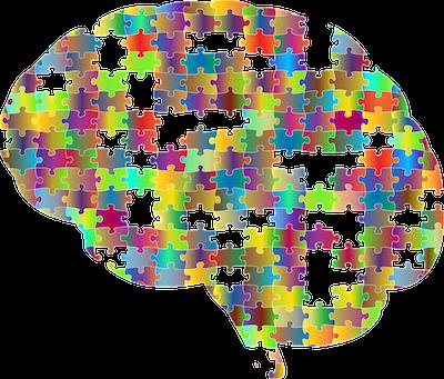 Puzzle Brain