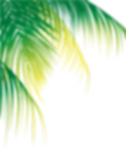 247-2474754_ftestickers-greenery-tropica