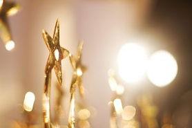 iStock-500147019-stars-awards-Large-300x