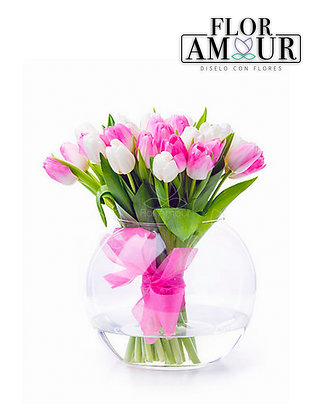Atado de Tulipanes
