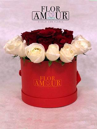 Red & White box