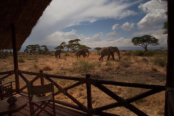 elephantslodgeA.jpg