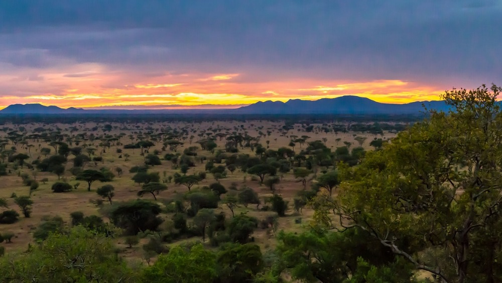 Tanzaniapanoramic