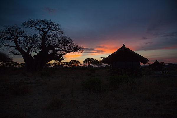 Baobab, tent.jpg