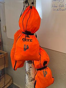 Core Cooling bag.JPEG