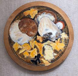 JaneOldfield-Edible Fungi-oil on wood-diam24cm copy 2.jpg