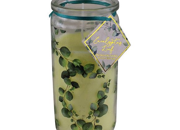 Eucalyptus Leaf Fragranced Candle In Glass Tube Jar