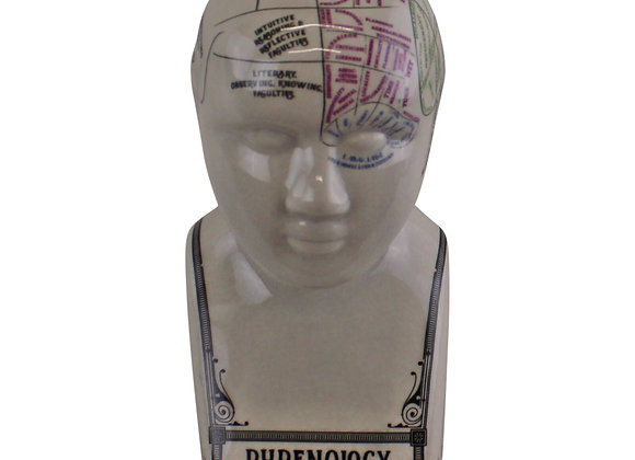 Small Ceramic Crackle Phrenology Head