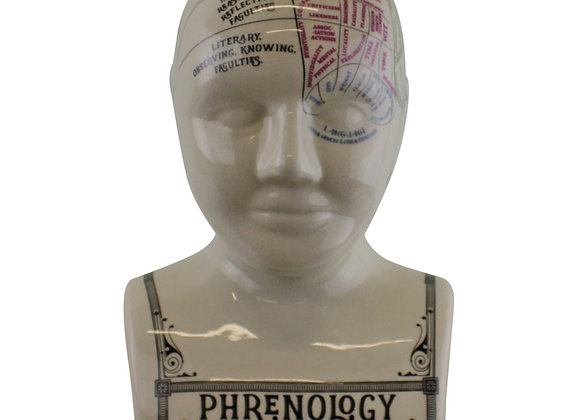 Large Ceramic Crackle Phrenology Head