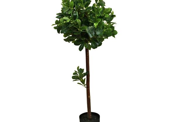 Artificial Tung Oil Ball Tree, 110cm