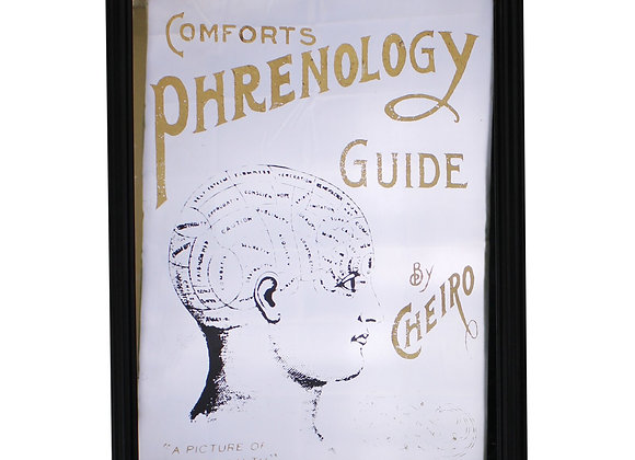 Retro Mirrored Wall Sign, Phrenology
