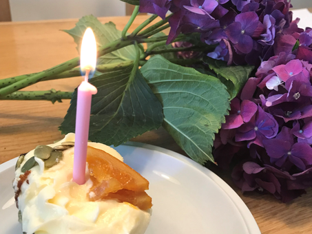 1 Year in Business. Musings from the Director and Founder Lisa Sweeting