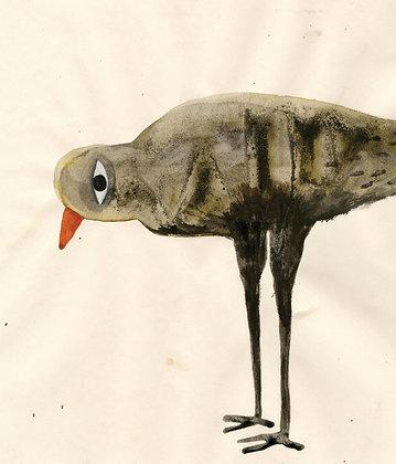 Bird N6