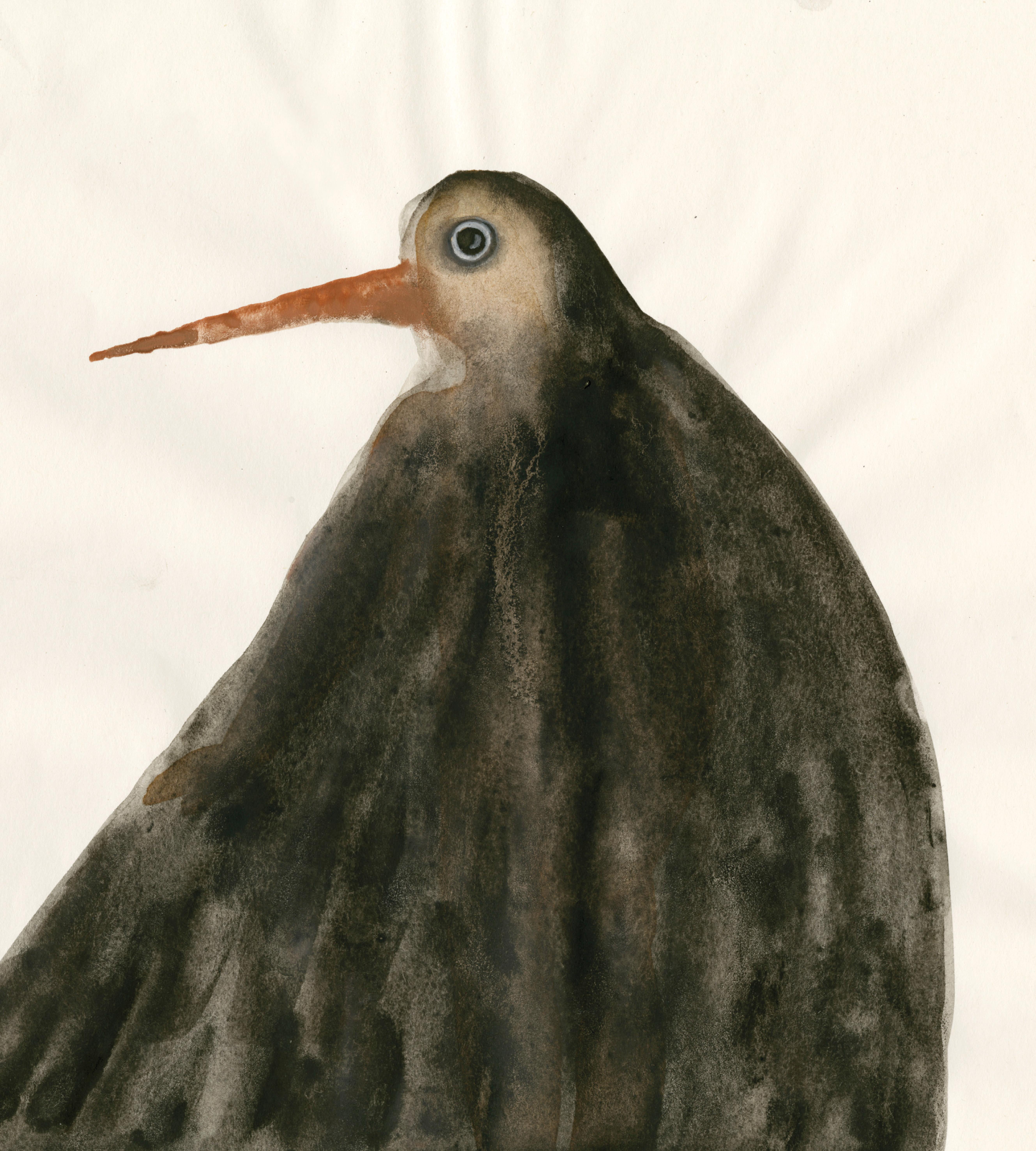Bird N3