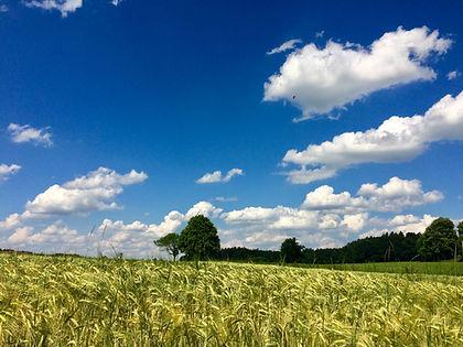 Ferienwohnung Rosenheim Simssee Chiemsee auf dem Land