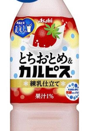 4901340043640とちおとめ&カルピス 500ml