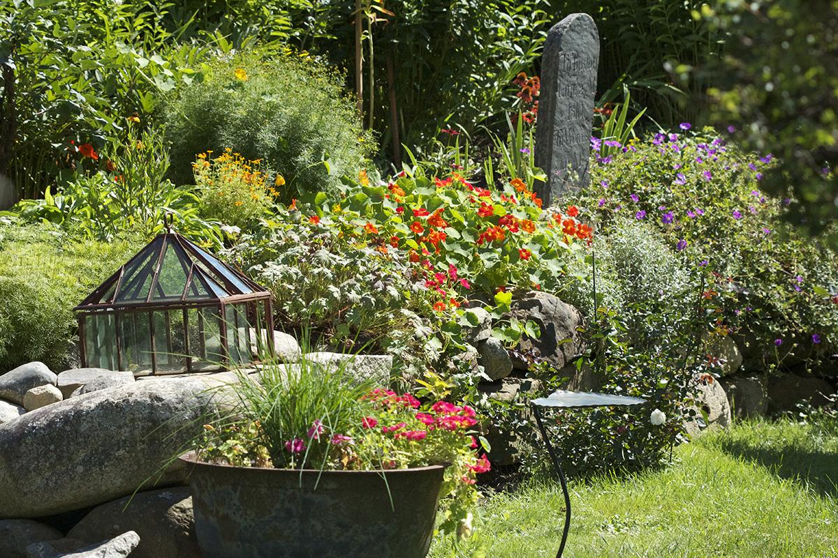 Perennial Flower Grouping