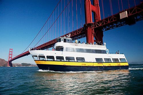 Children's 1 Hour Bay Cruise Tour