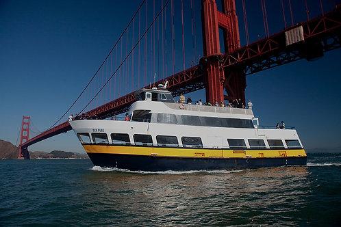 1 Hour Bay Cruise Tour