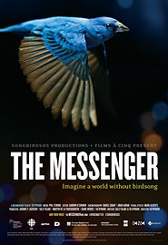 The-Messenger-poster-e1442950665246.jpg