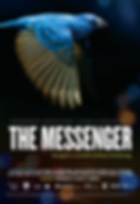 The-Messenger-poster-e1442950665246.jpg