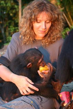 Astrid et chimpanzés