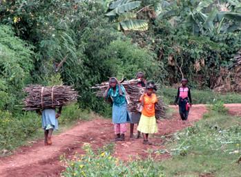 Vallée de Subukia