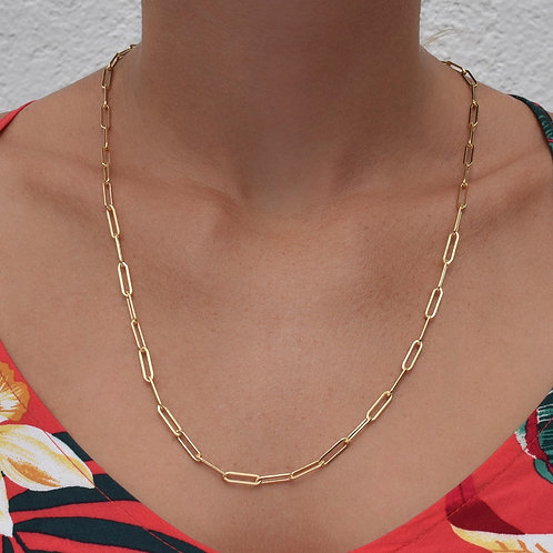 14K Gold Reader Chain/Large