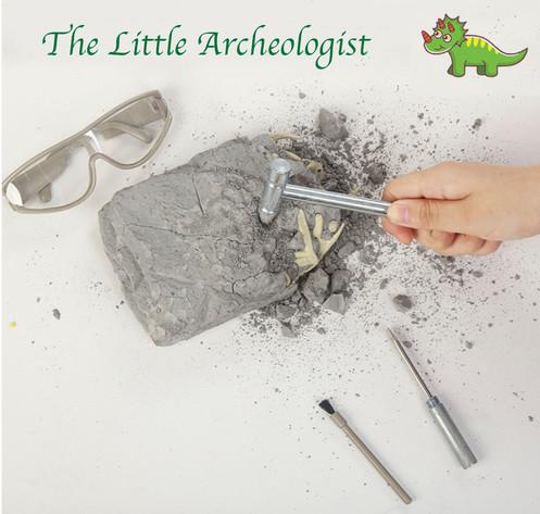 DIY Dinosaur Excavation Kit