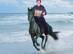 Beach-Horse-Will