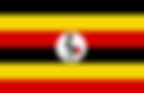 Inspection Services Uganda