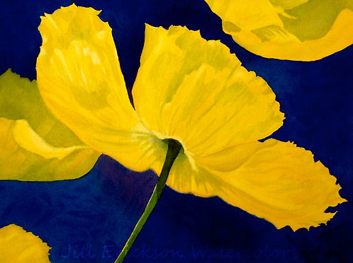 """Yellow Poppies"" 11x14 Watercolor"